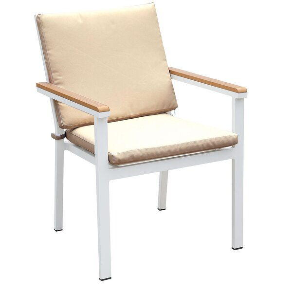 Salter Patio Dining Chair with Cushion (Set of 2) by Rosecliff Heights