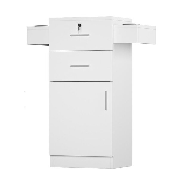 Allicen 2 -Drawer Storage Cabinet