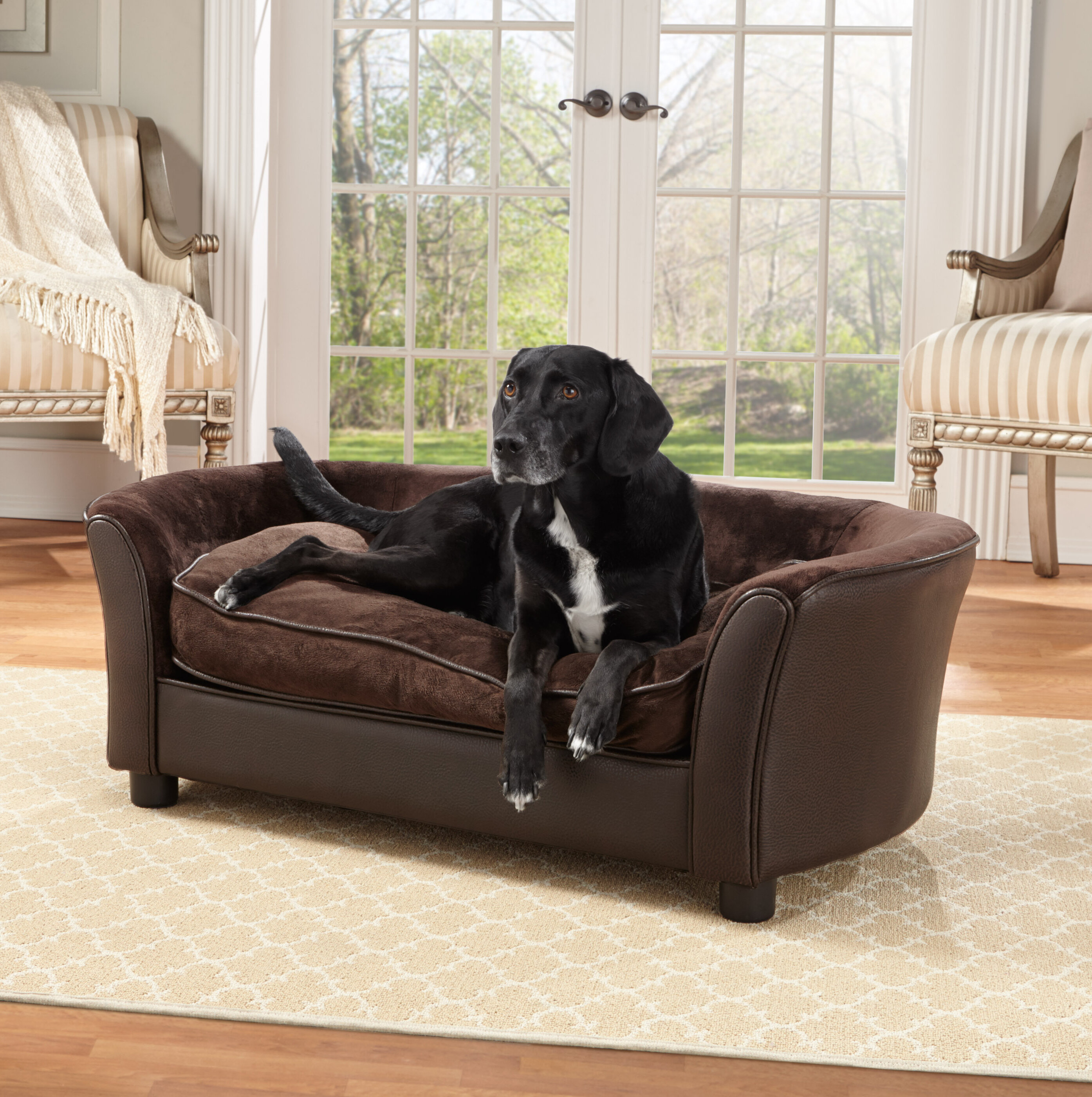 Tucker Murphy Pet Longo Panache Dog Sofa U0026 Reviews | Wayfair