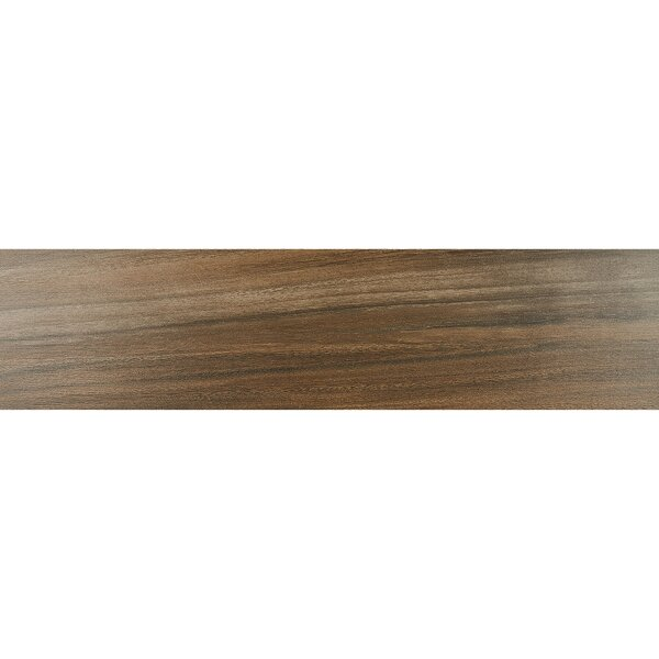Acacia Valley 9 x 36 Porcelain Wood Look Tile in Ark by Daltile