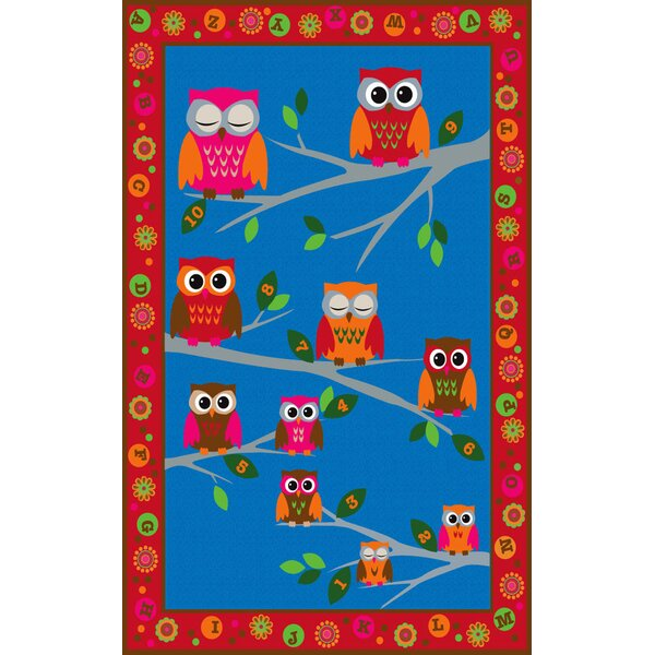 Hoot Hoot Owl Childrens Area Rug by Kid Carpet