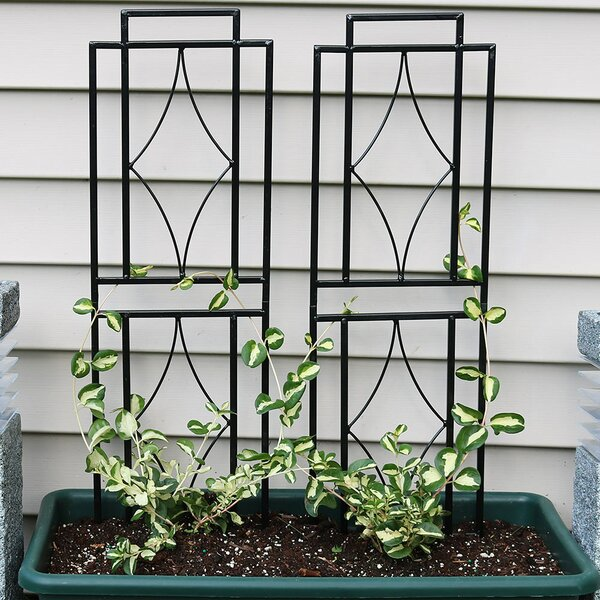 Contemporary Steel Gothic Trellis Set by Wildon Home ®