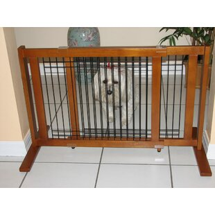 Pet & Dog Gates You\'ll Love | Wayfair