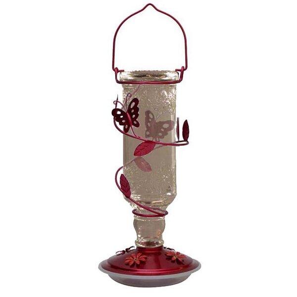 Glass Décor Bottle Hummingbird Feeder by Friends of Flight