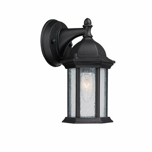 Comparison Hearne 1-Light Outdoor Wall Lantern By Darby Home Co