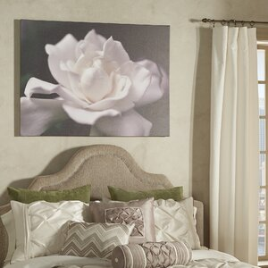 'Lovely Gardenia' Photographic Print on Wrapped Canvas by Trademark Fine Art