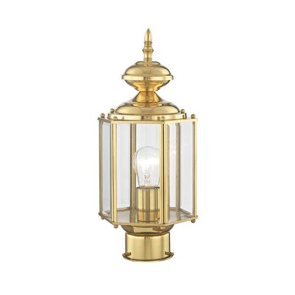 Etelvina 1-Light Lantern Head by Alcott Hill