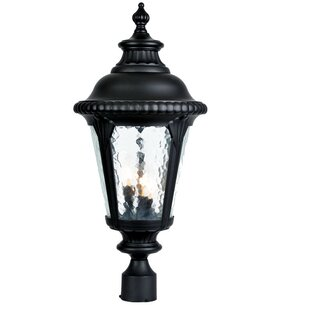 Look for Appel Outdoor 3-Light Cast Aluminum Lantern Head By Astoria Grand