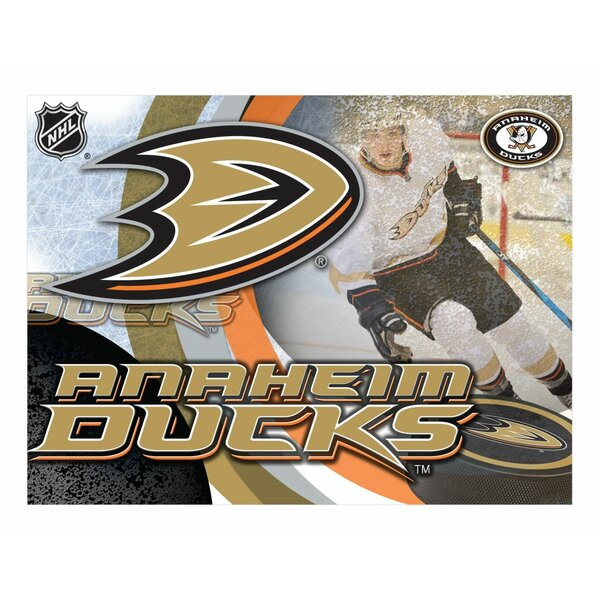 NHL Graphic Art on Wrapped Canvas by Holland Bar S