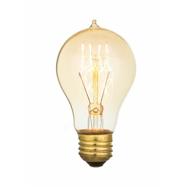 40W E26 Incandescent Vintage Filament Light Bulb by Aspen Brands