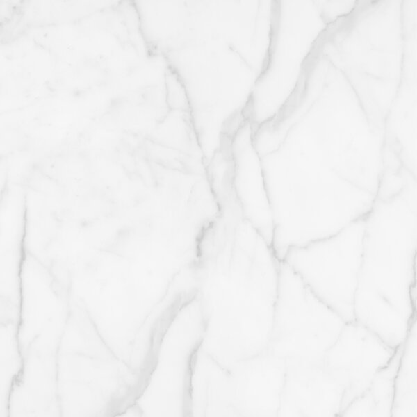 Quest Polished 32 x 32 Porcelain Field Tile in White by Emser Tile