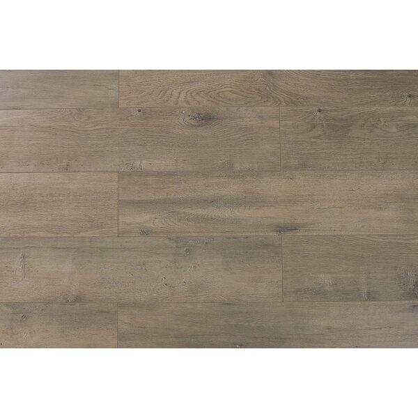 Trini 6.7 x 48 x 12mm Oak Laminate Flooring in Ultra Century by Serradon