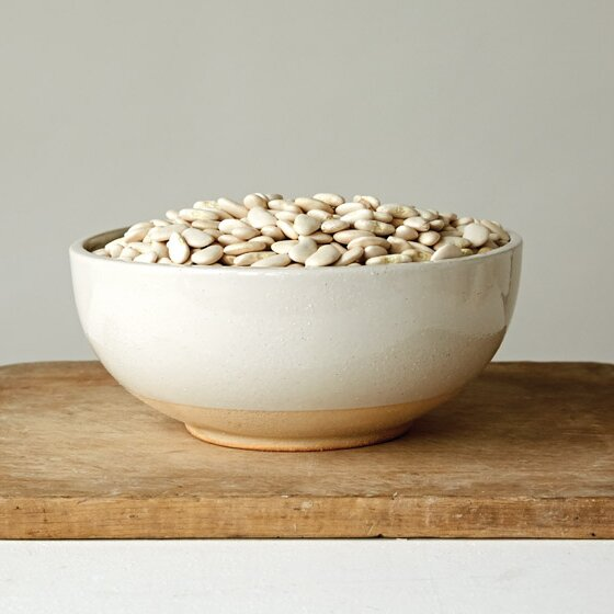 Proietti Salad Bowl by Mint Pantry