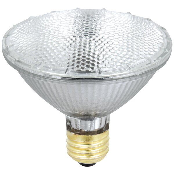 55W Halogen Light Bulb by FeitElectric