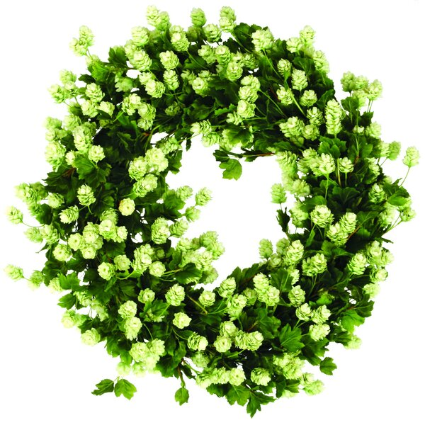 Hops Wreath by Jane Seymour Botanicals