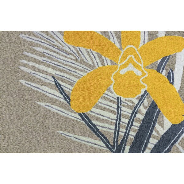 McIntosh Orchid Multi Area Rug by Bay Isle Home