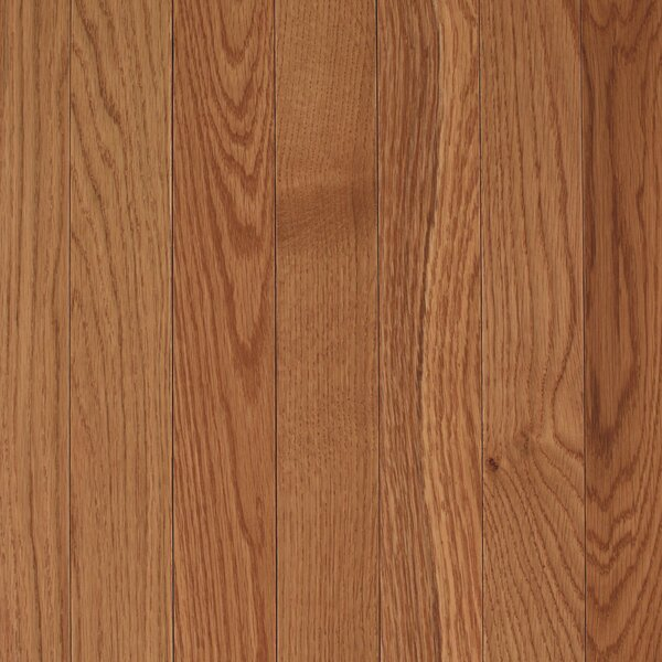 Barletta 2-1/4 Solid Oak Hardwood Flooring in Golden by Mohawk Flooring