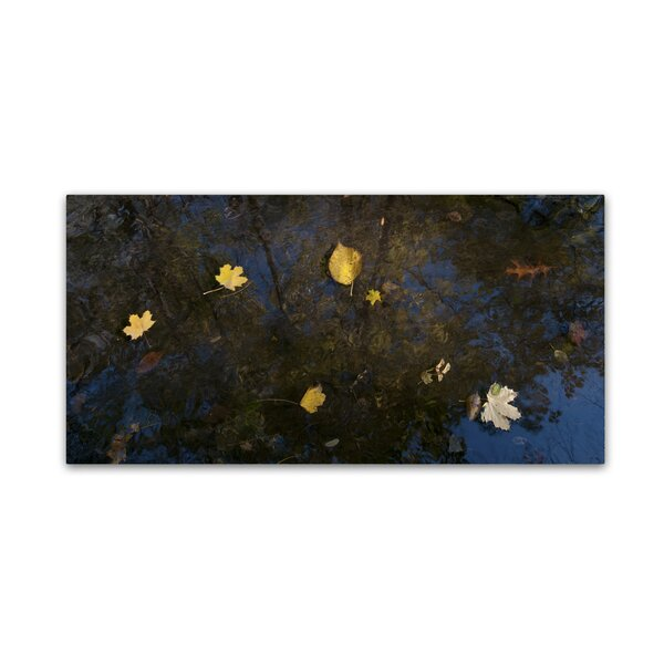 Autumn Leaves Floating By by Kurt Shaffer Photographic Print on Wrapped Canvas by Trademark Fine Art