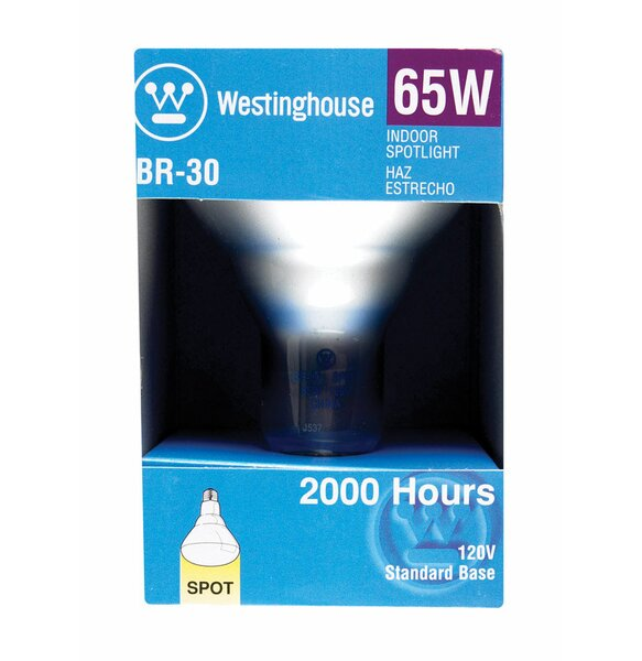 65W E26 Dimmable Incandescent Edison Spotlight Light Bulb by Westinghouse Lighting