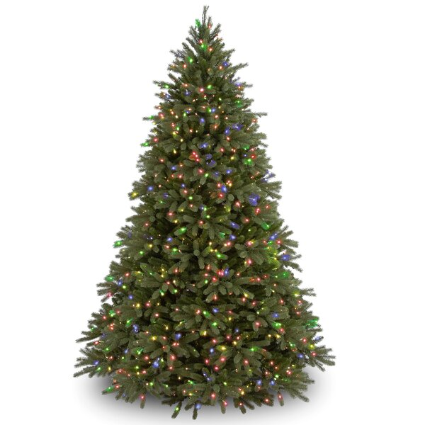 Feel Real Fraser Green Fir Trees Artificial Christmas Tree Multi Colored Lights with Stand by Gracie Oaks