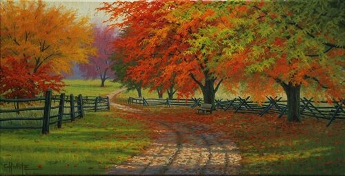 Path Through The Maples by Charles White Photographic Print by Hadley House Co