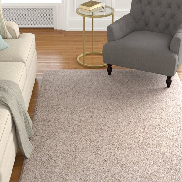 Stony Creek Area Rug by Charlton Home