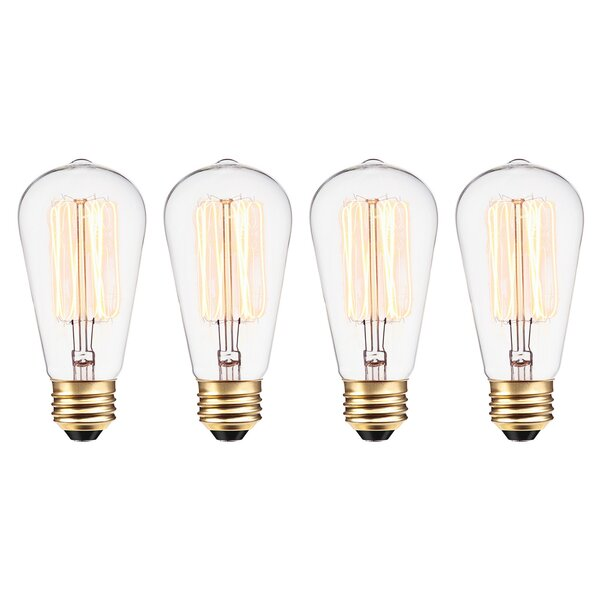 60W E26 Dimmable Incandescent Edison Light Bulb by Globe Electric Company