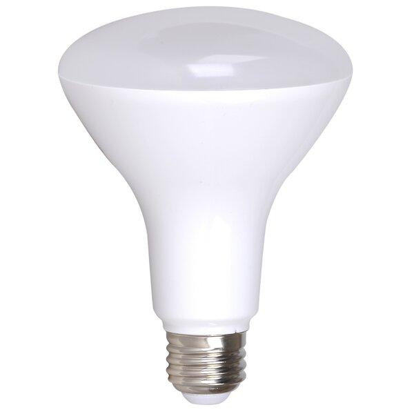 17W E26/Medium (Standard) LED Light Bulb (Set of 4) by AM Conservation Group