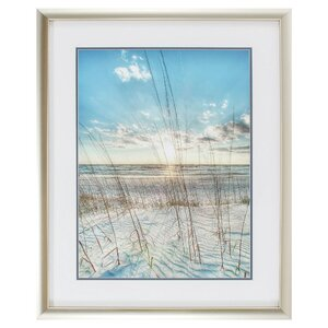 'Among the Grass' Framed Photographic Print by Highland Dunes