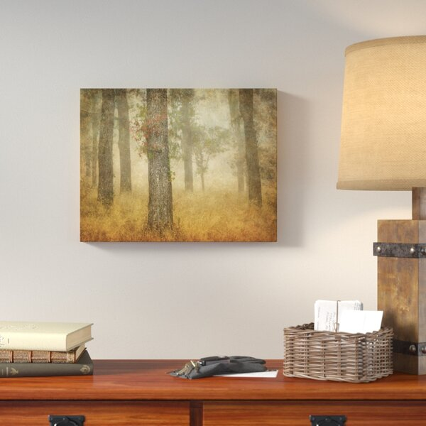 Oak Grove in Fog Photographic Print on Wrapped Canvas by Loon Peak