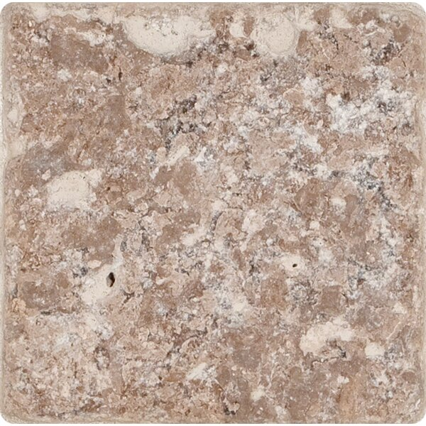 4 x 4'' Travertine Field Tile in Tumbled Walnut by MSI