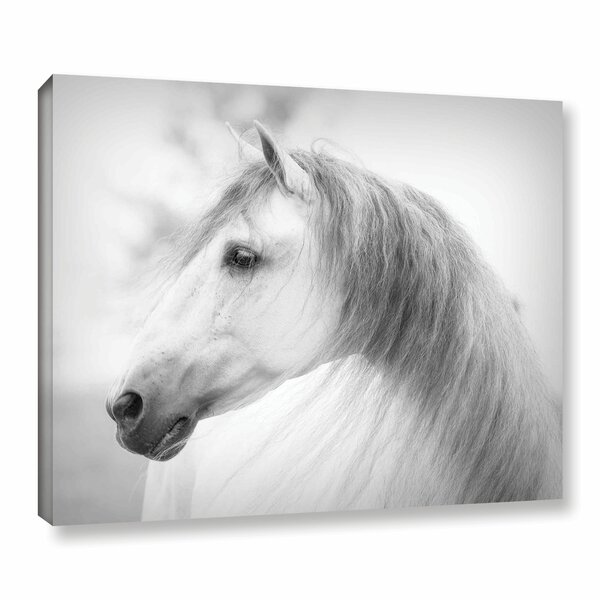 Savino Photographic Print on Wrapped Canvas by Alcott Hill