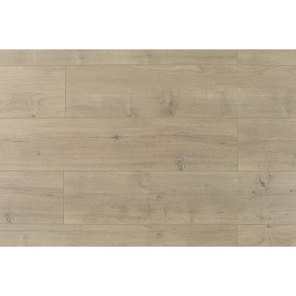 Trini 6.7 x 48 x 12mm Oak Laminate Flooring in Ultra Taupe by Serradon