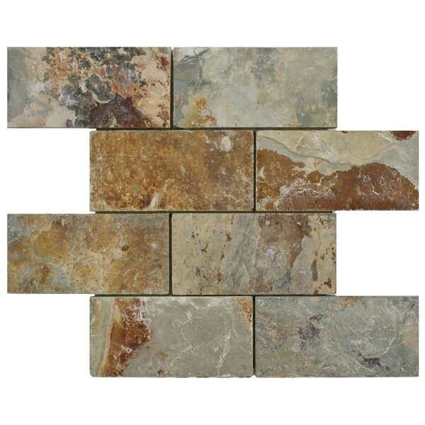 Peak 2.88'' x 5.88'' Natural Stone Mosaic Tile in Brown/Gray by EliteTile
