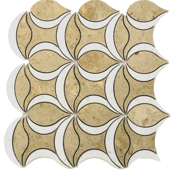 Water Jet Tulip Random Sized Marble Mosaic Tile in White/Yellow by Matrix Stone USA