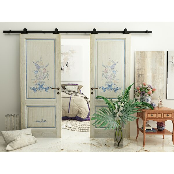 Double Door American Design Barn Door Hardware by Vancleef