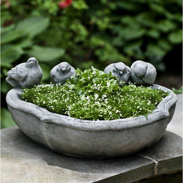 Jaco Cast Stone Pot Planter by One Allium Way