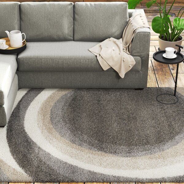 Kellan Downward Spiral Gray Area Rug by Ivy Bronx