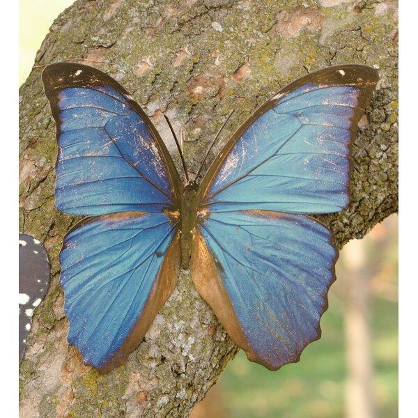 Wind & Weather Tropical Butterfly Metal Wall Decor & Reviews | Wayfair