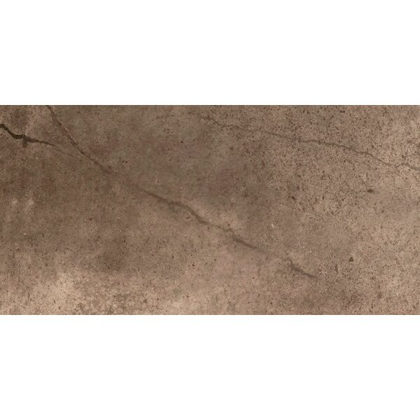 St Moritz II 12 x 24 Porcelain Field Tile in Chocolate by Emser Tile
