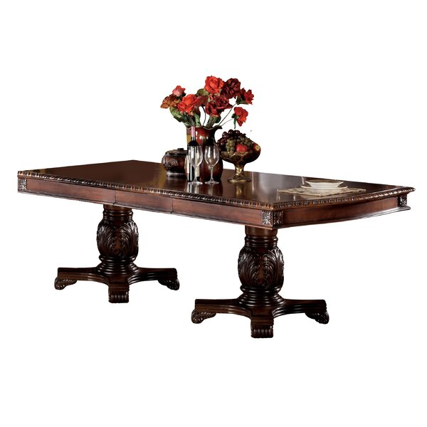 Aiden Extendable Dining Table by Astoria Grand