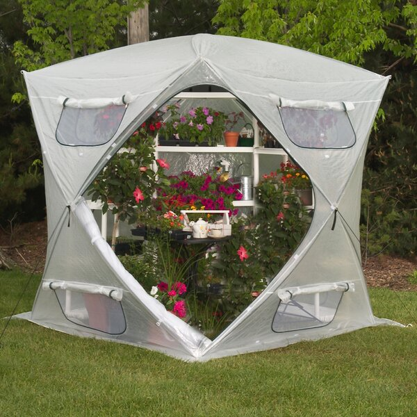 Bloomhouse 7 Ft. W x 7 Ft. D Greenhouse by Flowerhouse