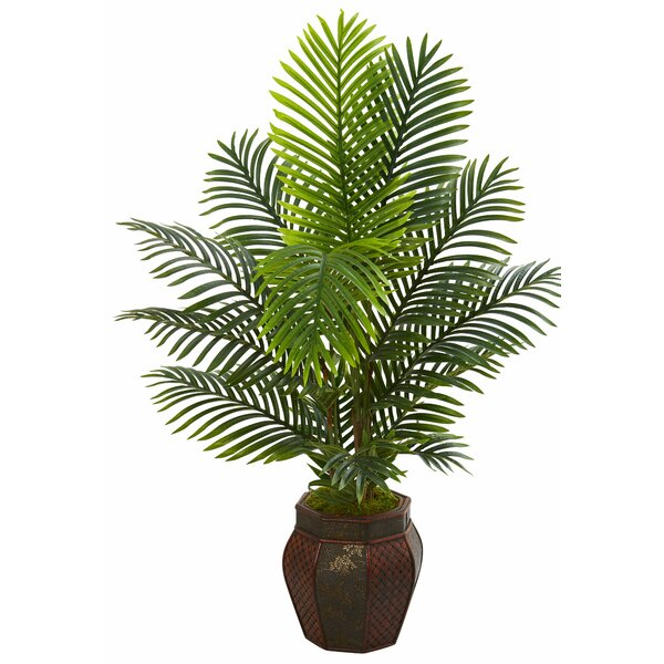 Paradise Floor Palm Tree in Planter by Bay Isle Home