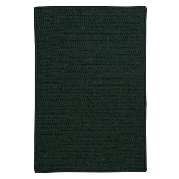 Gilmour Dark Green Solid Indoor/Outdoor Area Rug by Charlton Home