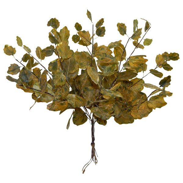 Dried Autumn Spray Desk Top Plant (Set of 12) by Charlton Home