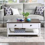 Shannock Lift Top Coffee Table with Storage by Rosalind Wheeler