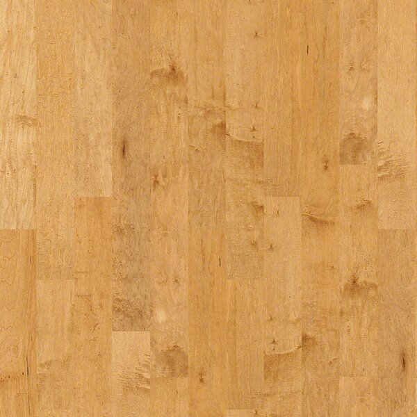 Ridgeland 5 Maple Engineered Hardwood Flooring in Tan by Virginia Vintage