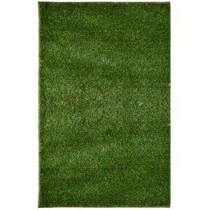Green Indoor/Outdoor Area Rug