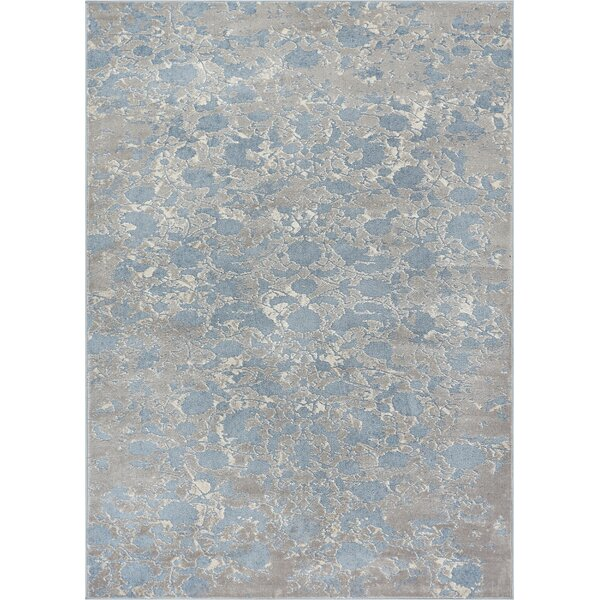 Emmett Vintage Blue/Gray Area Rug by House of Hampton