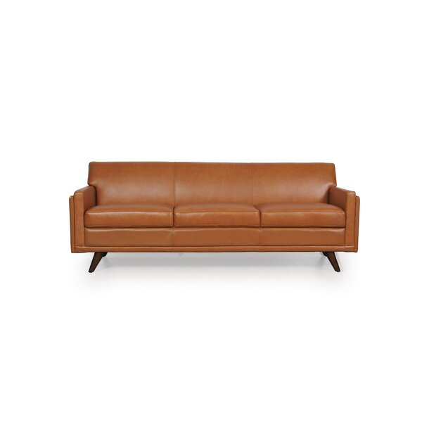 Ari Leather Sofa by Corrigan Studio